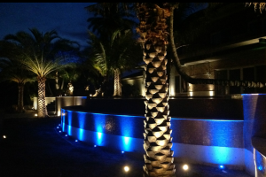 Colored LED Outdoor Lighting Houston